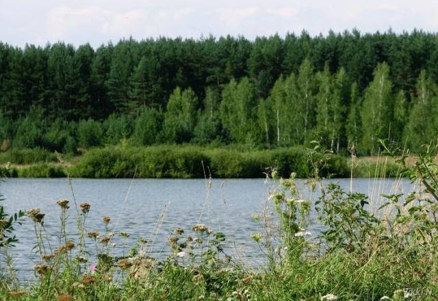Орловская область, Россия